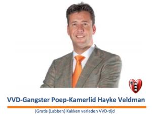 Hayke Veldman