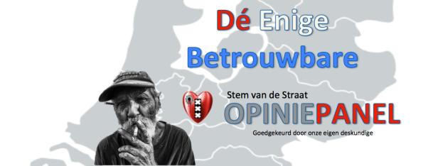straat-opinie-panel